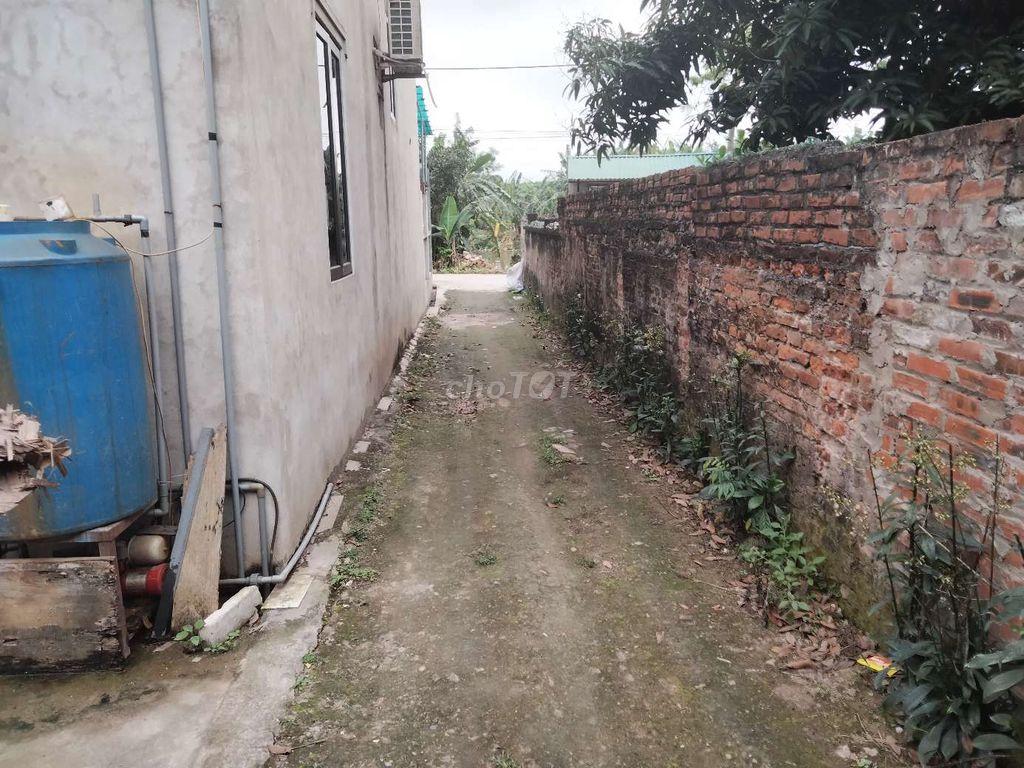 Chính chủ cần bán đất tại thôn Thanh Giang Trong, Xã Thanh Cao, Huyện Thanh Oai, Hà Nội - Ảnh chính