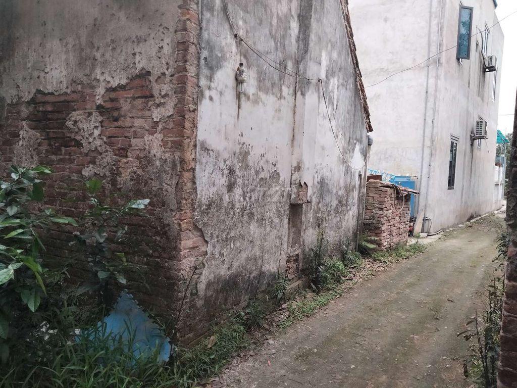 Chính chủ cần bán đất tại thôn Thanh Giang Trong, Xã Thanh Cao, Huyện Thanh Oai, Hà Nội - Ảnh 4
