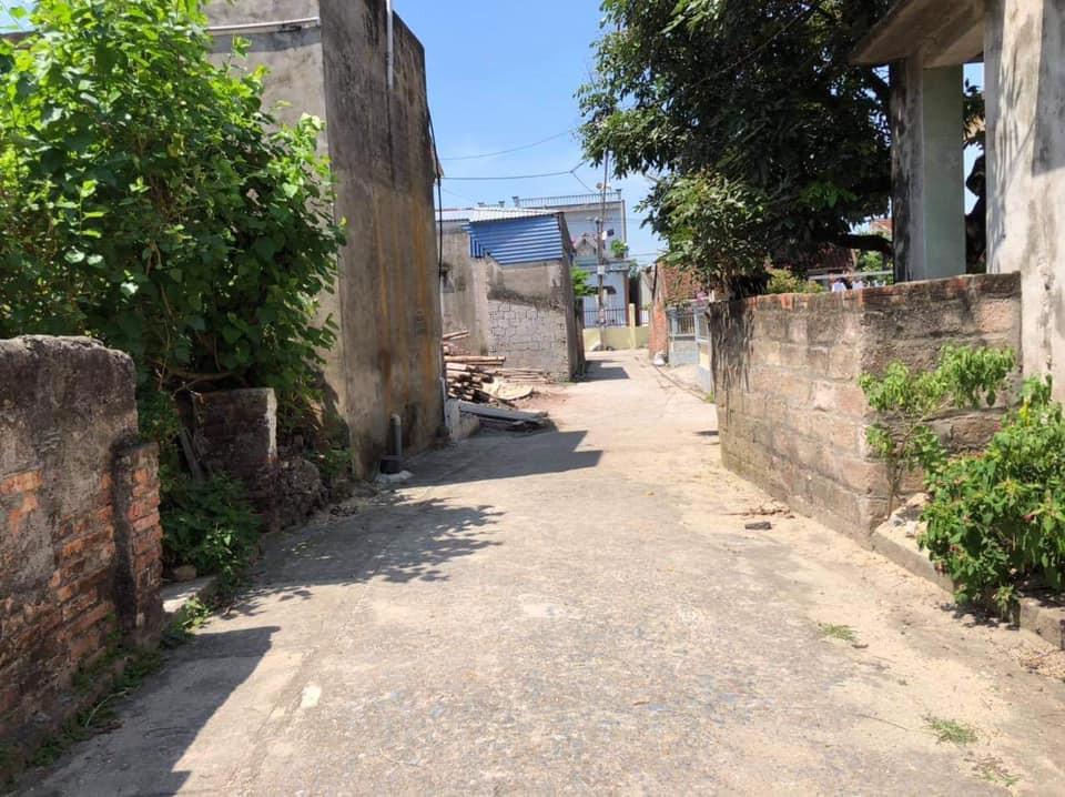 Thanh khoản lô đất Thổ cư của Địa Chủ tại xã Bãi Sậy - Ân Thi - Ảnh 1