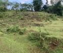 Cần bán đất nghỉ dưỡng Tân Lạc giá rẻ, đất đẹp, đầu tư cực tốt