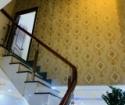 S0011 - Bán nhà khu thương mại Phú Hồng Thịnh 8 Đường N2, Bình Chuẩn, Thuận An, Bình Dương