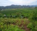 Cần bán mảnh đất RSX với giá chỉ vài trăm triệu tại Cao Phong