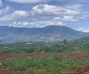 Cần bán lô đất thuộc xã Nam Hà huyện Lâm Hà tỉnh Lâm Đồng