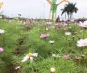 Hải Yên Eco Villas thành phố móng cái quảng ninh