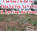 Có 2 lô đất cần bán tại địa chỉ Thôn Vũ Trù, Xã Vũ Xã, Huyện Lục Nam, Tỉnh Bắc Giang