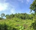 Bán 7751m đất bám suối 2 bên tại Kim Sơn, Kim Bôi
