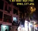 Cho thuê mặt phố 15 Liễu Giai 200m2 mt:30*10m 4 tầng Lộc phố 0981337456