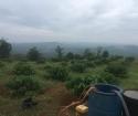 Chính chủ bán 2 lô đất gần nhau tại xã Quảng Tín, huyện Đắk R'rấp, tỉnh Đắk Nông