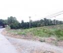 BÁN ĐẤT MẶT TIỀN tại Tỉnh Lộ 865, Xã Mỹ Phước Tây, Thị xã Cai Lậy, Tiền Giang