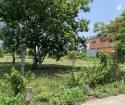 Cho thuê đất làm nhà xưởng, trồng rau, cây kiểng phường Hiệp An, nhánh DX 103, hẻm xe hơi. Gần trạm
