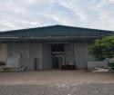 Cho thuê nhà xưởng mặt đường Quốc lộ 31, khu vực Thái Đào, Lạng Giang, Bắc Giang.