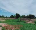 Đất Nền Gía Chỉ Từ 11tr/m2 -Tại Huyện Thoại Sơn - An Giang