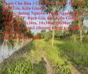 Chính Chủ Bán 3 Lô Đất Có Vị Trí Đẹp Tại Rạch Giá, Kiên Giang