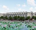 Mở Bán Shophouse, Đất Nền dự án River City Hưng Hóa Tam Nông Phú Thọ