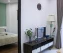 Cho thuê căn hộ đường 2-9 2pn full nội thất