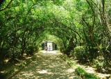 Thiết kế không gian nhà vườn thơ mộng ở Huế