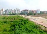 Các loại đất được tham gia thị trường bất động sản