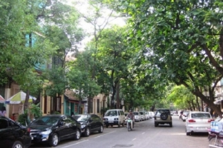 Duyệt chỉ giới đỏ tuyến đường dài hơn 4km tại Gia Lâm, Hà Nội